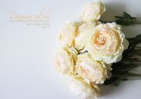 【Ranunculus】ラナンキュラス:クリーム<img class='new_mark_img2' src='https://img.shop-pro.jp/img/new/icons13.gif' style='border:none;display:inline;margin:0px;padding:0px;width:auto;' />