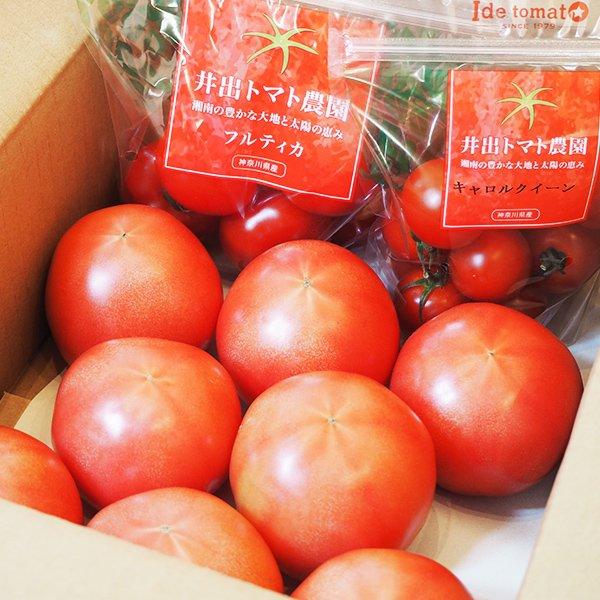 【12月15日頃〜納品】トマト3種詰合せmini (桃太郎AM×8玉)【予約注文】