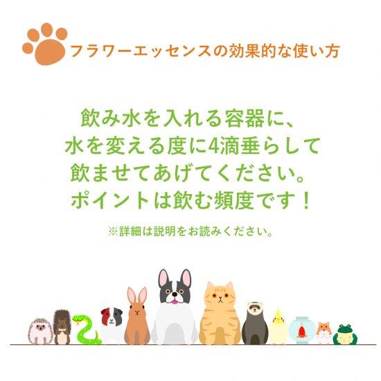 カームアンドハピネス フォーペット - Calm and Happiness for Pets 《DTWフラワーエッセンス》