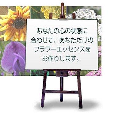フラワーエッセンス【電話】カウンセリング