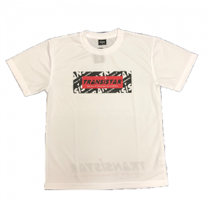 <img class='new_mark_img1' src='//img.shop-pro.jp/img/new/icons5.gif' style='border:none;display:inline;margin:0px;padding:0px;width:auto;' />Tシャツ「SANDSTORM」