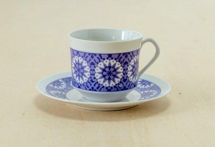 Epiag Royal / 白磁のカップ&ソーサー / チェコスロバキア / ビンテージ / T0351