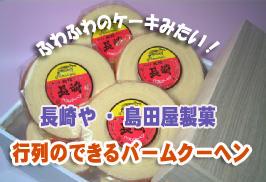 年輪を重ねた 銘菓 長崎バウムクーヘン 島田屋製菓 謹製