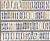 精密 1/350 イギリス英国海軍乗組員 93体入 2つ折立体
