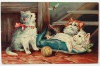 未使用アンティークポストカード|虫と子猫達