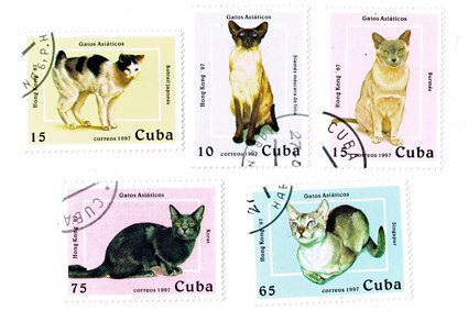 ネコ切手5種セット キューバ 1997年(...