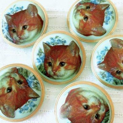 ネコのガラスボタン(チェコ) 茶ネコ...