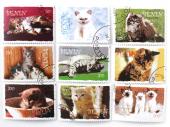 ネコ切手9種セット|ベナン共和国 2003年(外国切手・古切手)