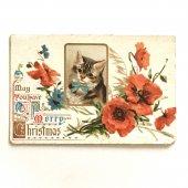 アンティークポストカード|ポピー(ケシの花)とネコ