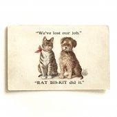 未使用アンティークポストカード|仕事を失ったイヌとネコ