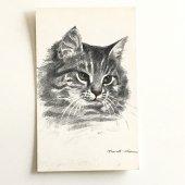 未使用アンティークポストカード|モノクロ長毛猫