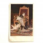 アンティークポストカード|ヴィクトリアンキャット