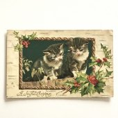 アンティークポストカード|柊と2猫