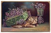 アンティークポストカード|花籠の下に潜り込むネコ