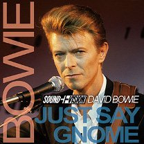 David Bowie(デヴィッド・ボウイ)/JUST ...