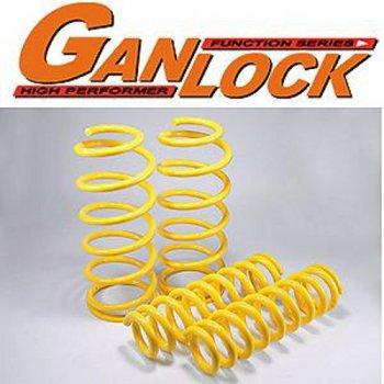 GANLOCKコイルスプリング・2インチアップ・前後セット・185サーフ・95系プラド