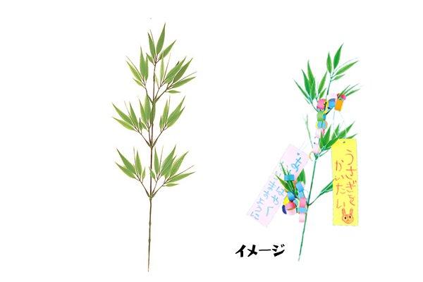 ミニ七夕笹10本セット