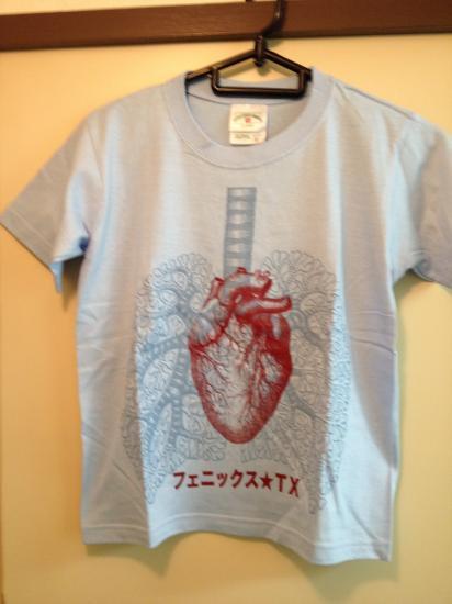 フェニックスTX 心臓T
