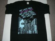 MY LAST FALL