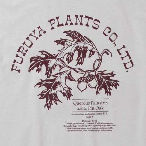 FURUYA PLANTS designed by Jerry UKAI