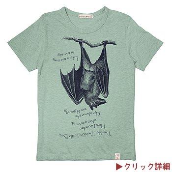 博物画オオコウモリTシャツ