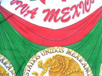 メキシコ独立記念日 ファブリック 生地 [コルティーナ メダル] リメイク