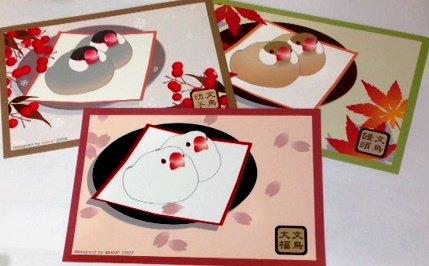 文鳥のポストカード 大福/団子/饅頭