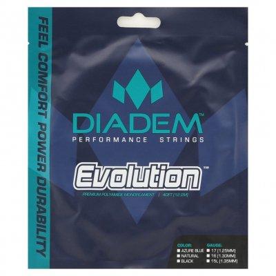 Diadem Evolutionl  Black ダイアデム エボルーション  17G/1.25mm  ブラック