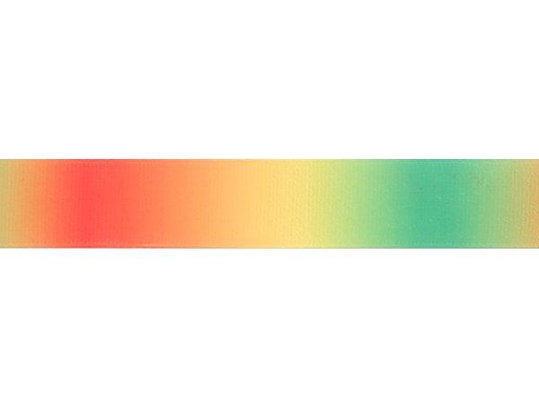 グログランリボン グラデーション オレンジxライム 22mm