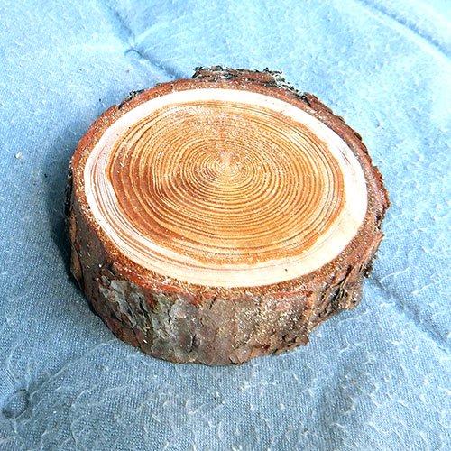 自然木の輪切り(信州カラマツ)中サイズ