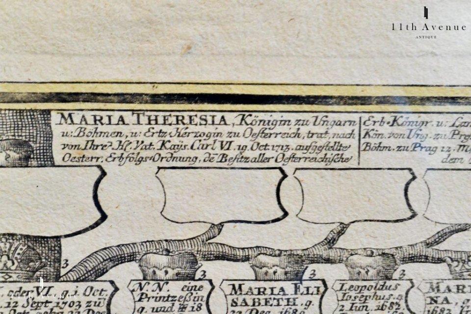 神聖ローマ帝国【アンティーク】ハプスブルグ家 家系図 18世紀