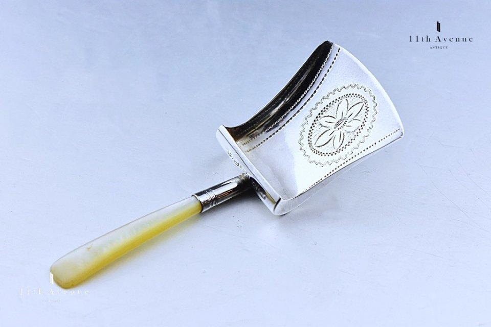 William Pugh【イギリス】純銀製ティーキャディースプーン 1811年