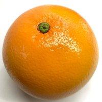 現品限り!リアルな質感☆オレンジ
