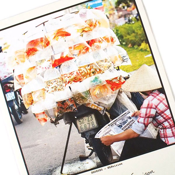 ベトナム ポストカード(gold fish vendor, Saigon サイゴンの金魚売り)【画像2】