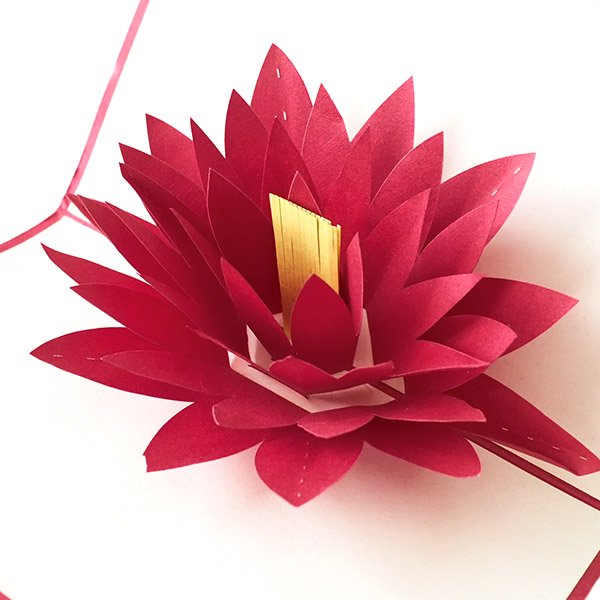 ベトナム 切り絵 ポップアップカード(蓮の花 睡蓮 18×11)