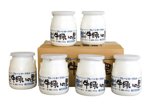 【定期便】牛飼いの里「プレーンヨーグルト」450g×6個(H-816)全6ヶ月