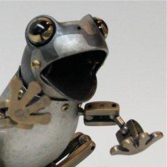 十字目毒雨蛙
