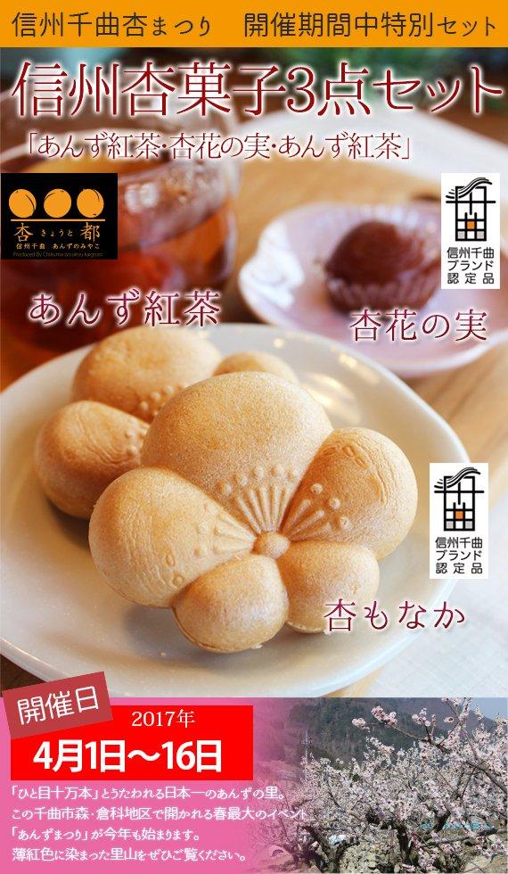 【杏まつりフェア限定】「あんず紅茶・杏花の実・あんず紅茶」信州杏菓子3点セット