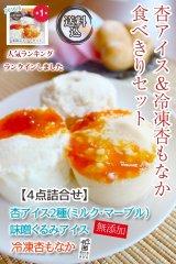 【夏期限定】【お試し】【送料込】杏アイス&冷凍杏もなか食べきりセット