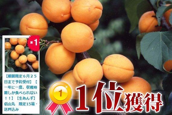 H29年度終了しました【一年に一度、収穫時期しか食べられない!!】【生あんず】信山丸 限定15箱・送料込み(2.8kg)【予約期間】6/8~6/…