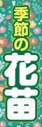 花苗002
