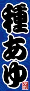 種鮎002