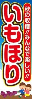 芋掘り007