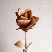 kakanoamukago 白樺のバラ
