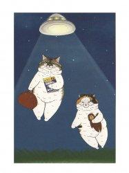 KORIRI 世にも不思議な猫世界 ポストカード UFO