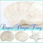カピスシェープトレイ カピス貝 ハワイアン雑貨 マリン 海の画像