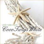 ホワイトココトゥイッグ 椰子の木 小枝 ヒトデ ディスプレイの画像