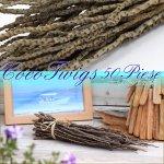 ココトゥイッグ50本 椰子の木 小枝 ディスプレイの画像