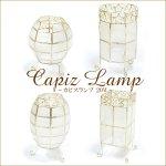 カピスランプ 20W 卓上 照明 ランプ ボール/サークル/コクーン/スクエアの画像