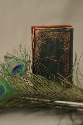 BookWallet10<br> [Fairy]